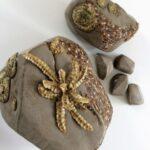 stenen met mos en varen