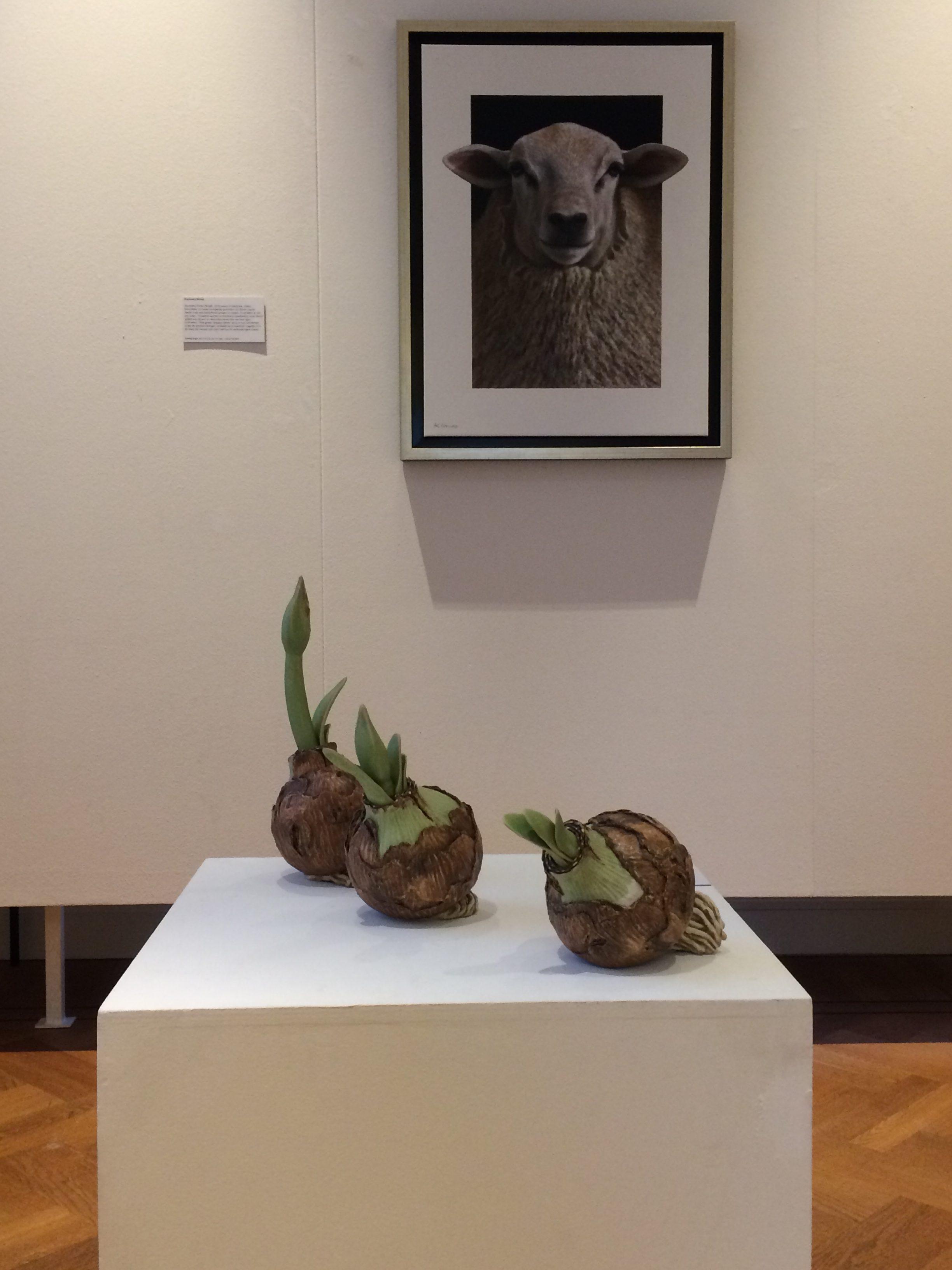amaryllis museum gorinchem
